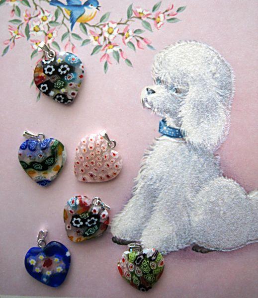 Puppy contest 002