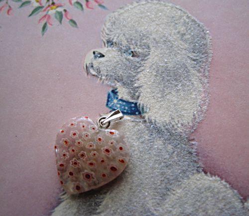 Puppy contest 003