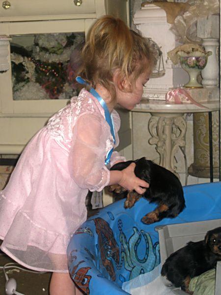 Puppy love swap 038