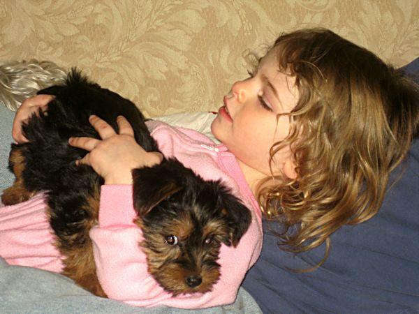 Puppies! 451