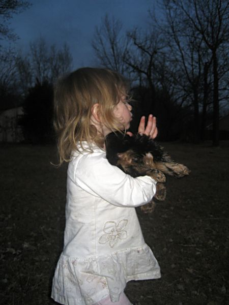Puppies! 506