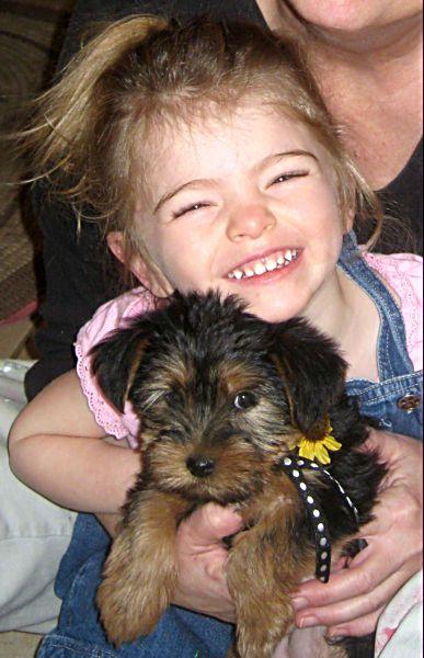 Puppies! 569