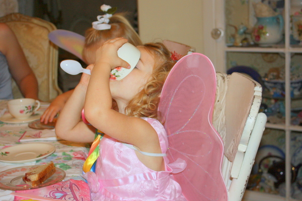 Fairy party with joan 059