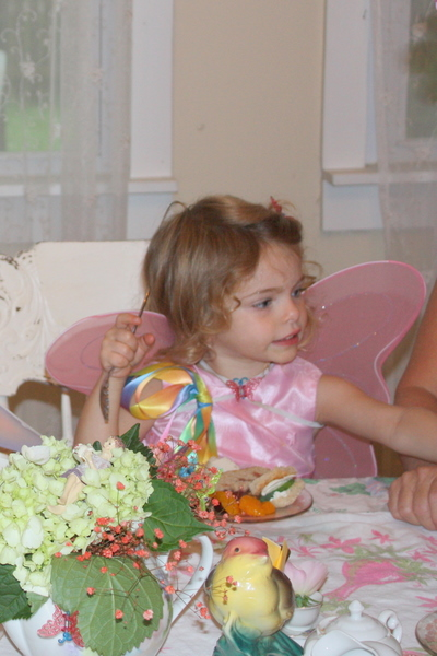 Fairy party with joan 072