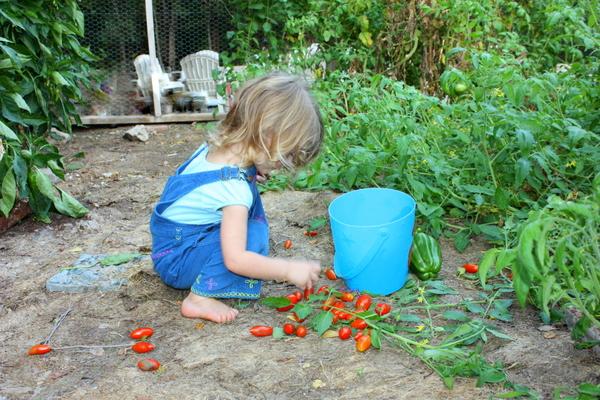 Gardening 012