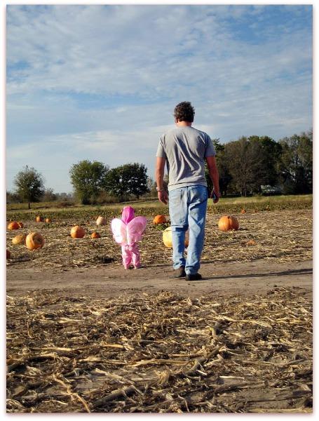 Pumpkin patch 021