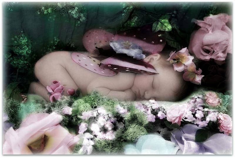 Fairy newborn