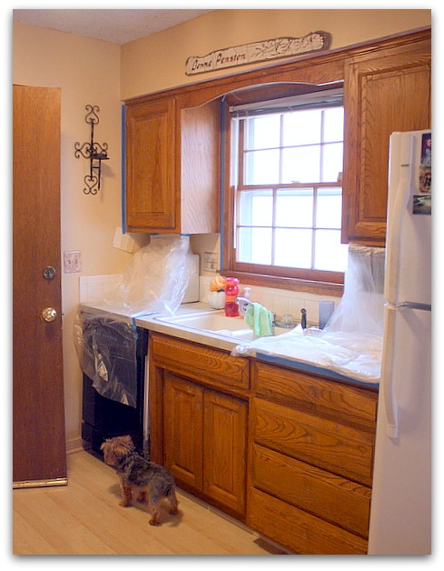 Karla's Cottage: The Short cut way to repaint kitchen cabinets with ...