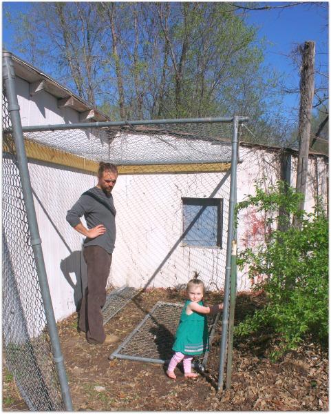 Chicken coop building 038