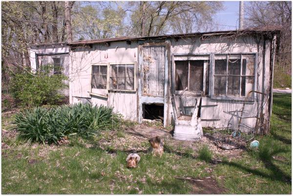 Chicken coop building 070