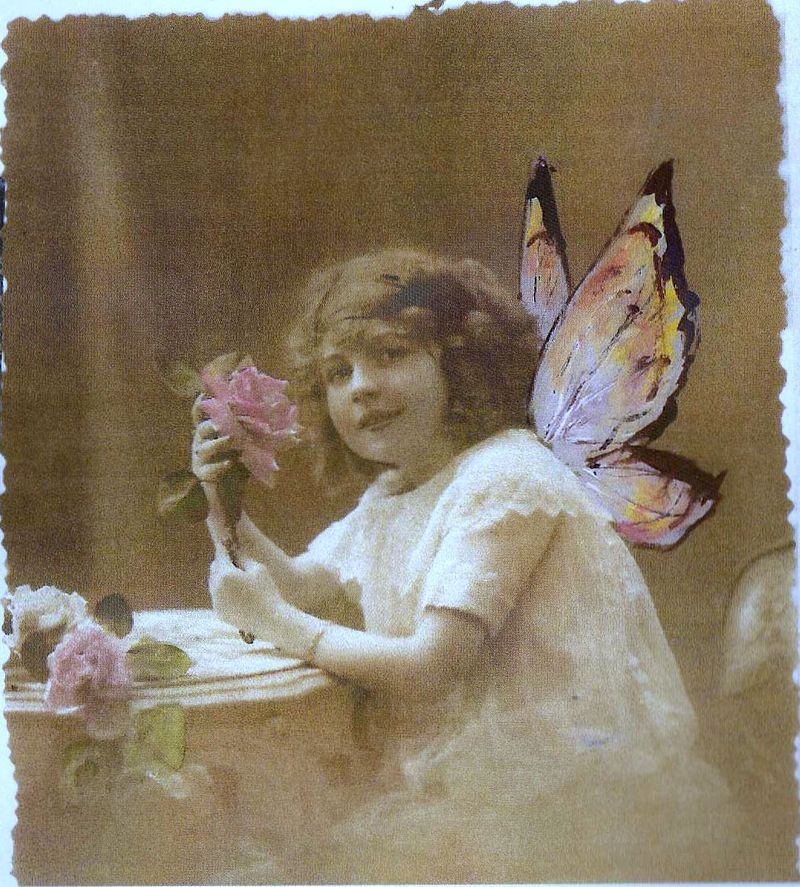 Fairy girl with rose
