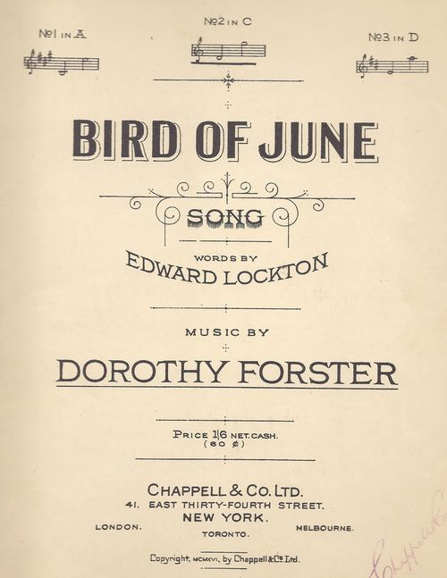 Bird%20of%20june%20(1)