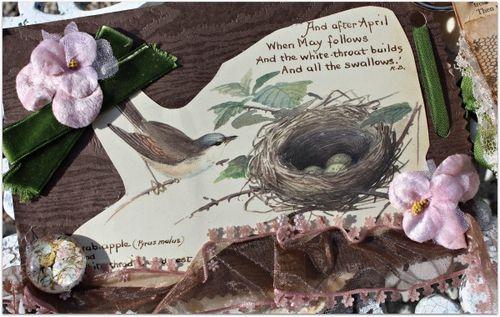 Birdsongbook 009