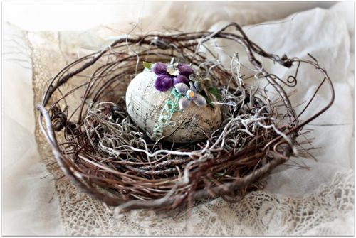 Eggs and nests 022