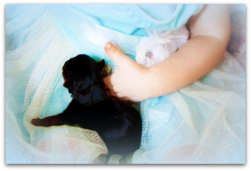 Newborns 055