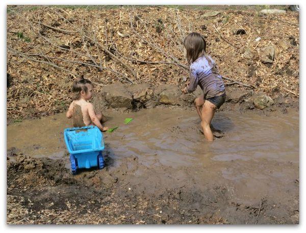 Mud puddle 072