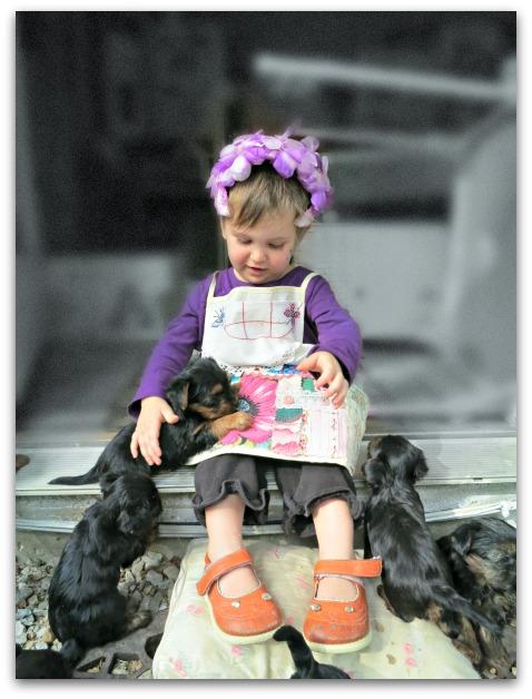 Gypsy spell book 023