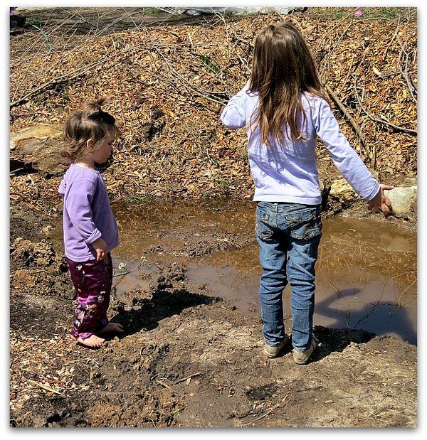 Mud puddle 047