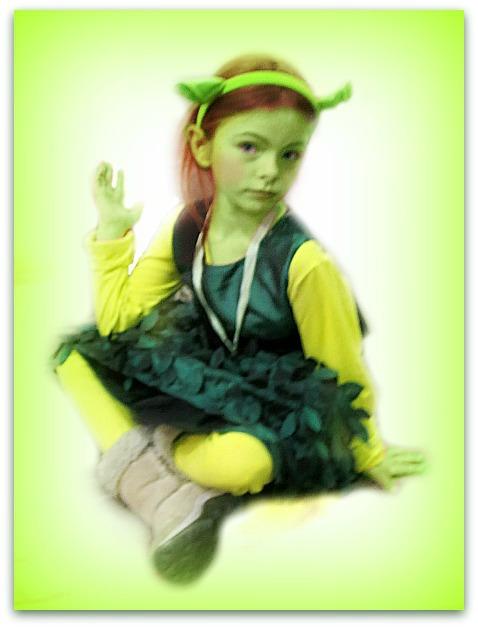 Shrek (7)
