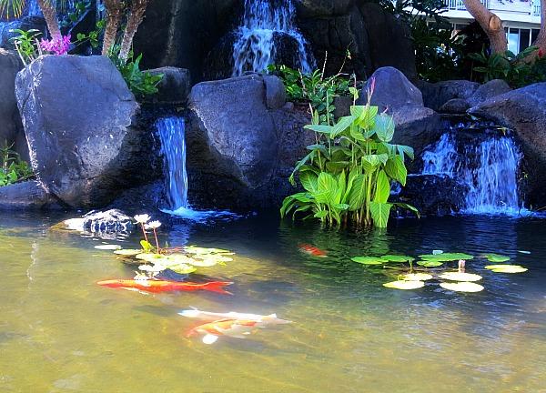 Hawaiimaui 109