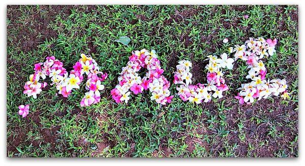 Hawaiimaui 032
