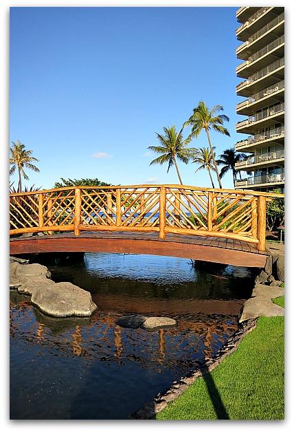 Hawaiimaui 008