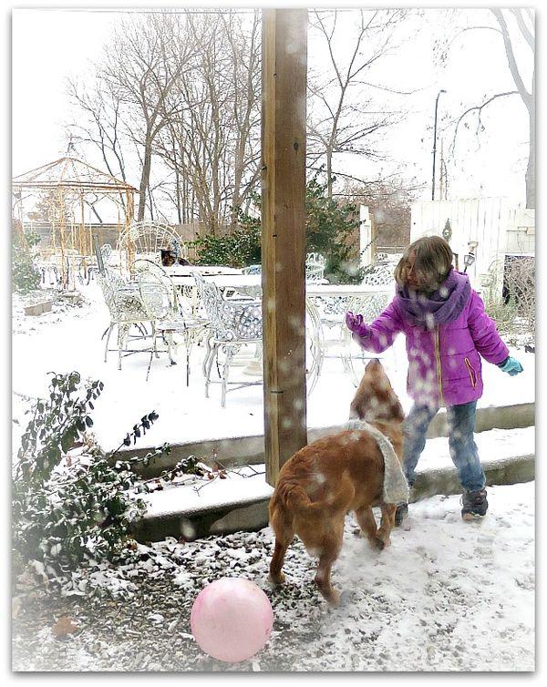 First snow 014