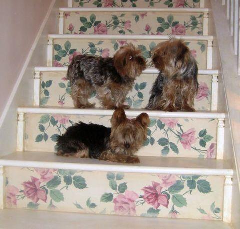 Stairway_redo_074