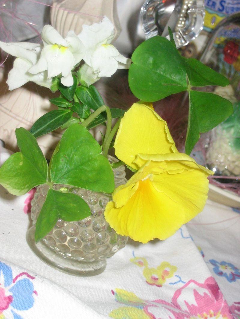 Plantings_easter_031