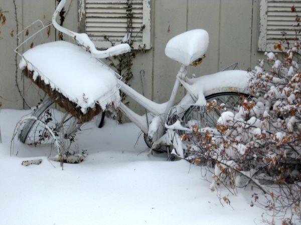 Snowday_009