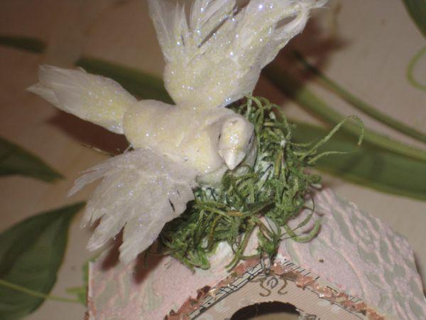 Birdhouse_011
